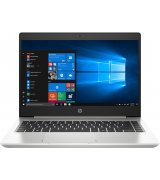 Ноутбук HP Probook 445 G7 Silver (1F3L1EA)