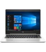 Ноутбук HP Probook 455 G7 Silver (175W6EA)