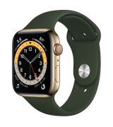 Apple Watch Series 6 44mm (GPS+LTE) Gold Stainless Steel Case with Cyprus Green Sport Band (M07N3)