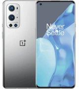 OnePlus 9 Pro LE2120 8/256GB Morning Mist