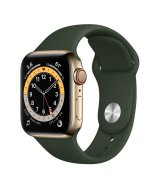 Apple Watch Series 6 40mm (GPS+LTE) Gold Stainless Steel Case with Cyprus Green Sport Band (M06V3/M02W3)