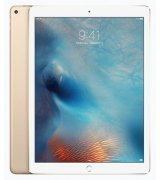 Apple iPad Pro 256GB Wi-Fi + 4G Gold
