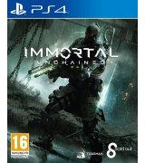 Игра Immortal: Unchained для Sony PS 4 (русские субтитры)